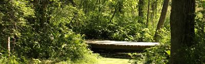 Estelle Wenrick Wetlands Preserve, Medway, Ohio
